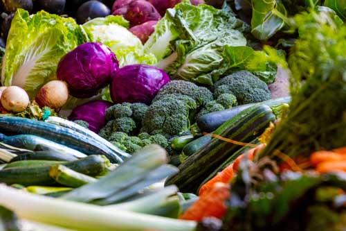 How To Start A Vegan Garden, Effortless Veganic Farming in 4 Steps 4